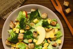 Fresh Vegetarian Salad Stock Photography