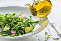 Fresh vegetarian salad with mix of vegetables Stock Photography