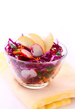 Fresh Vegetarian Salad With Red Cabbage Royalty Free Stock Images