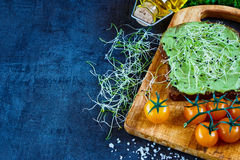 Fresh vegetarian sandwich. Healthy fast food background with space for text. Delicious vegetarian sandwich with whole grain bread, alfalfa and guacamole on Stock Photo