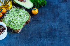 Fresh vegetarian sandwich. Tasty vegetarian sandwich with whole grain bread, alfalfa and guacamole on rustic wooden cutting board over dark vintage table Royalty Free Stock Images