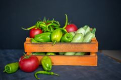 Free Fresh Veggies From The Market Royalty Free Stock Photos - 122606438