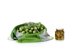 Fresh versus canned brussels sprouts Stock Images