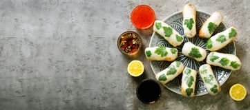 Fresh Vietnamese, Asian, Chinese food frame on grey concrete background. Spring rolls rice paper, lettuce, salad royalty free stock photography