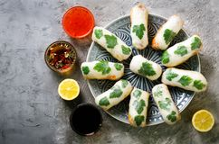 Fresh Vietnamese, Asian, Chinese food frame on grey concrete background. Spring rolls rice paper, lettuce, salad stock image