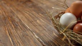Fresh village chicken eggs on dark wooden background. Easter entourage. stock photo