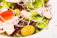 Fresh village salad with champignons. Royalty Free Stock Images