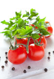 Fresh vine tomatoes Royalty Free Stock Photo