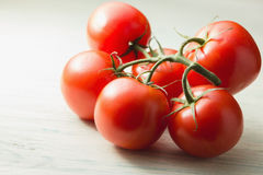Fresh vine tomatoes Stock Images