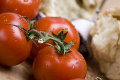 Fresh vine tomatoes. Detail of delicious fresh Italian vine tomatoes with water droplets stock photos