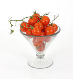 Fresh vine tomatoes in a large martini glass Royalty Free Stock Photos