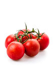 Fresh vine tomatoes Royalty Free Stock Photo