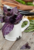 Fresh violet basil Royalty Free Stock Photo