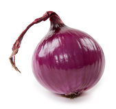 Fresh violet onion isolated on white Royalty Free Stock Images