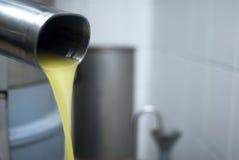 Fresh virgin olive oil Stock Image