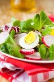 Fresh vitamin salad with radish and egg. Closeup Royalty Free Stock Image