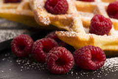 Fresh waffles garnished with powdered sugar and raspberries Royalty Free Stock Images