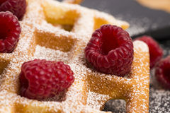 Fresh waffles garnished with powdered sugar and raspberries Royalty Free Stock Image