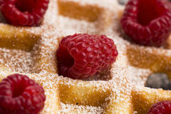 Fresh waffles garnished with powdered sugar and raspberries Royalty Free Stock Photos