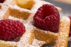 Fresh waffles garnished with powdered sugar and raspberries Stock Image