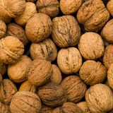 Fresh Wallnuts. Walnuts background. These nuts are known as the Common Walnuts, Persian Walnuts or English Walnuts. Top view Royalty Free Stock Photo