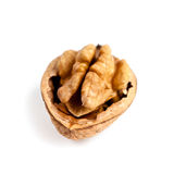 Fresh walnut Royalty Free Stock Images