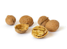 Fresh walnut Stock Images