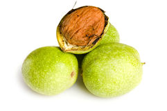 Fresh walnut Stock Photo