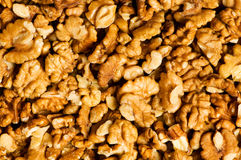 fresh walnut nuts Royalty Free Stock Photos