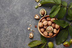 Fresh walnuts bowl Stock Images