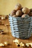Fresh walnuts in a bucket Stock Image