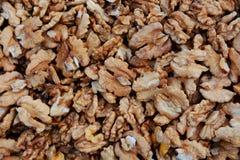 Fresh walnuts Royalty Free Stock Photo