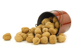 Fresh walnuts in an enamel  cooking pot Stock Photos