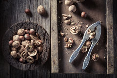 Fresh walnuts and hazelnuts with old nutcracker Royalty Free Stock Photo