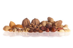 Fresh walnuts and hezelnuts stock photo