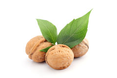 Fresh walnuts isolated on white Stock Photos