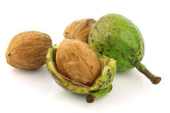 Fresh walnuts (Juglans regia) with shell opened Stock Photo