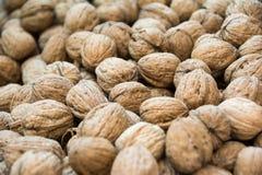 Fresh walnuts Royalty Free Stock Image