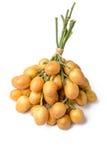 Fresh wampee fruit Stock Images