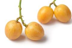 Fresh wampee fruit Stock Image