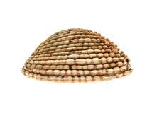 Fresh Warty venus clam - Fasolara venus verrucosa shell isolat Royalty Free Stock Photo