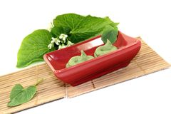 Fresh Wasabi with leaf and blossom Royalty Free Stock Photos