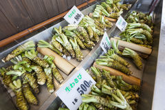 Fresh Wasabi Plants For Sale. At a Wasabi Farm in Hotaka, Japan. Shallow depth of field Royalty Free Stock Image