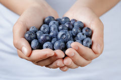Fresh washed blueberries in female teen hands. Shallow dof Stock Images
