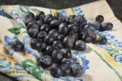 Fresh washed blueberries Stock Images