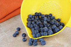 Fresh washed blueberries and strainer. Royalty Free Stock Photography