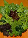 RAINBOW KALE BOUQUET. Fresh, washed greens in a colorful, variety and ready to eat Stock Photo