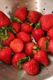Fresh washed strawberries Royalty Free Stock Photography