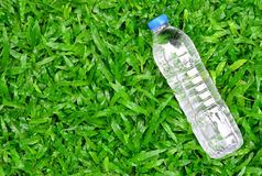 Fresh water bottle on green grass - healthy concept Stock Image