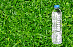 Fresh water bottle on green grass - healthy concept Stock Images